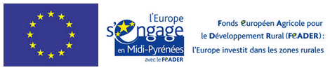 developpeur web freelance Montauban Midi-Pyrénées Tarn-et-Garonne 82